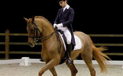 Rachmaninoff VD Roosenboom (Rubiquil X Ravel)